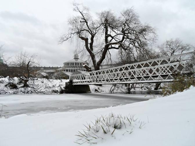 Prognoser: Vinteren kan ramme Danmark inden for få uger
